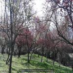 http://up.poshtiri.ir/view/1368549/3103764571.jpg