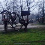 http://up.poshtiri.ir/view/1368555/5539709927.jpg