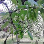 http://up.poshtiri.ir/view/1420021/7099859002.jpg