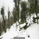 http://up.poshtiri.ir/view/1420025/4783348057.jpg
