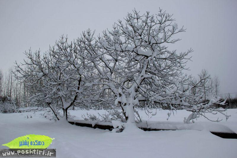 http://up.poshtiri.ir/up/poshtir/Pictures/bahram/2440434-d7d80f9ca45d9591c415ed36d0e2ec89-l.jpg