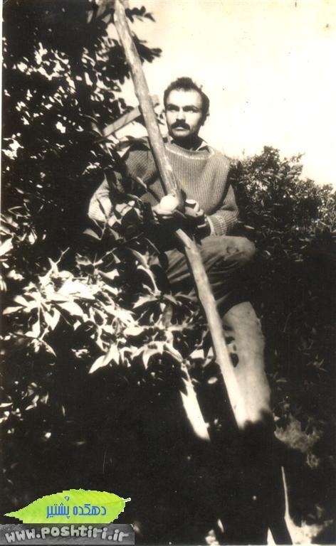 http://up.poshtiri.ir/up/poshtir/ghadimi/www.poshtiri.ir.ax ghadimi (5) (Medium)191338.jpg