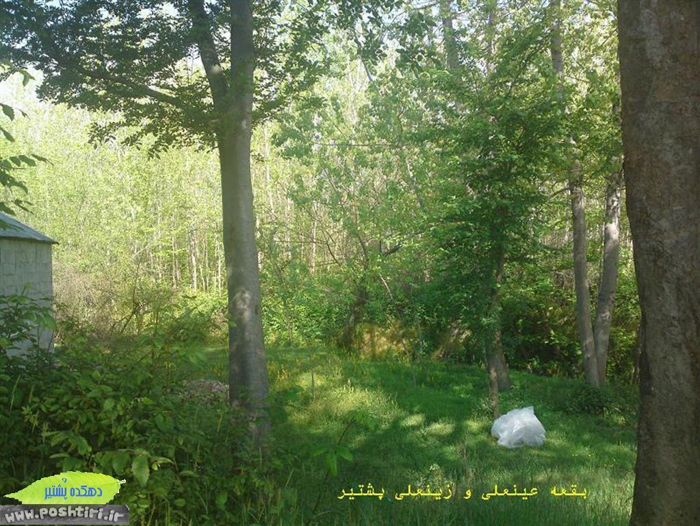 http://up.poshtiri.ir/up/poshtir/tabiat/عکسهای طبیعت روستای پشتیر (31).JPG